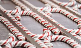 Disneyland and Disney California Candy Cane Schedule